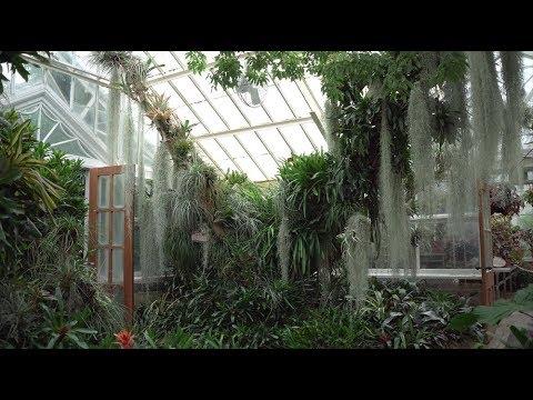 Ep 080: Planting Fields Arboretum Tour: Part 2 - Plant One On Me