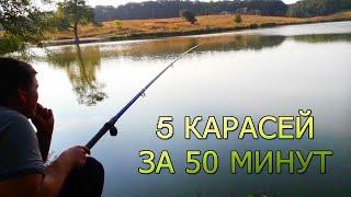 Ловля карася на поплавочную удочку Пять карасей за 50 минут