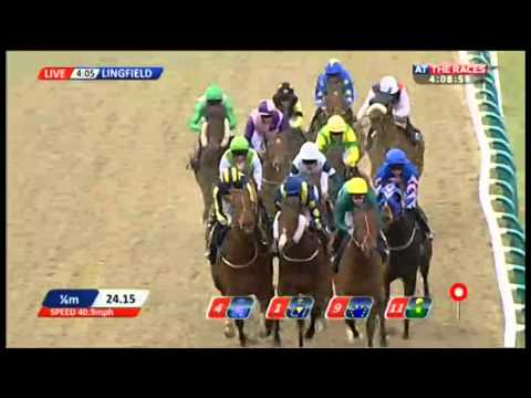 bookmakers.co.uk All-Weather Sprint Championships Conditions Stakes