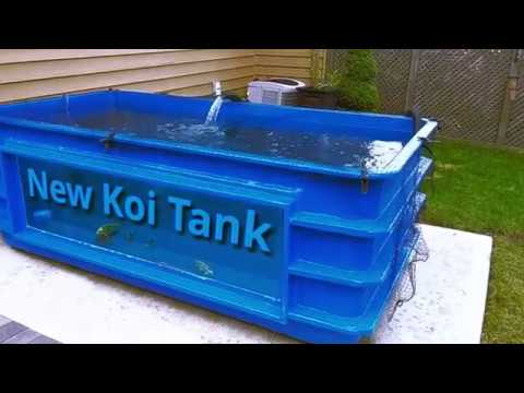 New Koi Tank - Fiberglass Tank With Window