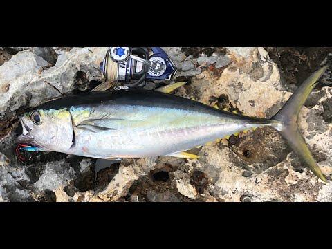 Shore Jigging For Yellowfin Tuna!!! Okinawa, Japan
