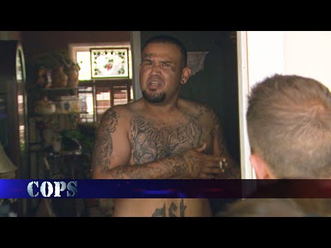 Kick Rocks, Detective Bryan Dubois, COPS TV SHOW