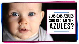GENÉTICA | ¿Los ojos azules son realmente azules?