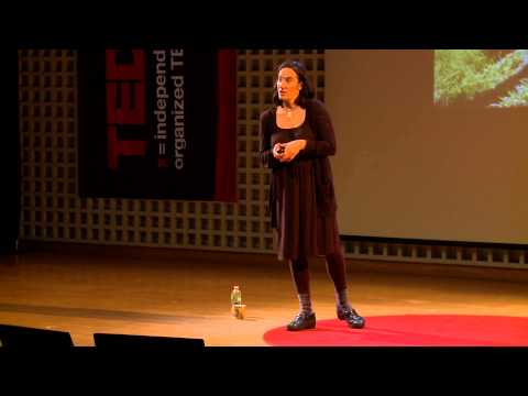 Are you really my friend?: Tanja Hollander at TEDxDirigo