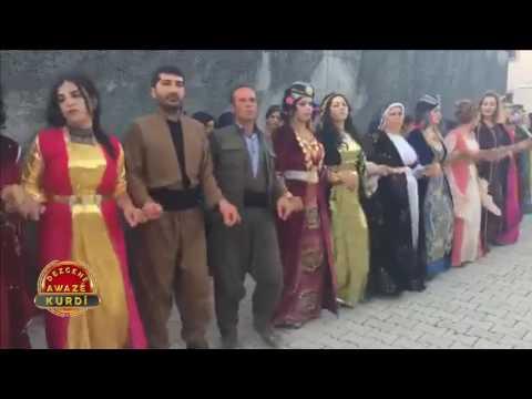 Gazi Yıldırım - 2018 Dawat Dilan Govend