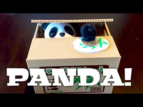 Cute panda in a box steals coins electronic novelty coin ban