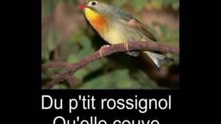 Renaud En cloque (sous-titré)
