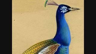 muslimgauze - mumbai vibe garden