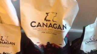 Good Dog Food For German Shepherd And All Other Breeds