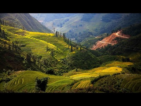 Vietnam Travel Guide and Travel Information 2016
