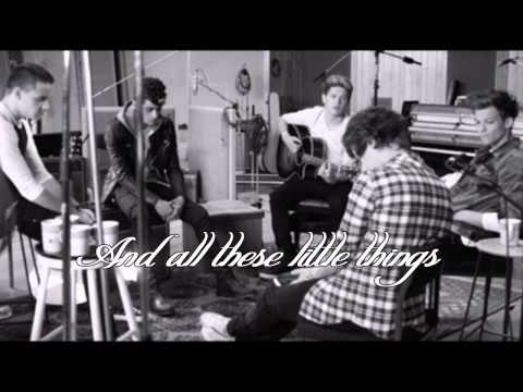 Little Things - One Direction Karaoke Duet |Sing With 1D!!|