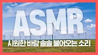 [집중력 높이는 소리] 시원한 바람 솔솔 불어오는 소리 백색소음 ASMR ★ 공신 강성태