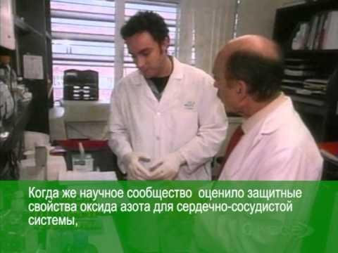 диетолог шилина отзывы