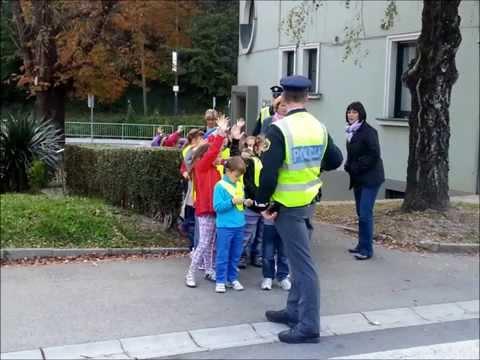 Varna pot s policistoma