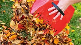 7 AUTUMN GARDENING TIPS