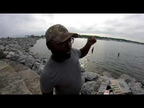Buffalo NY, Small Boat Harbor