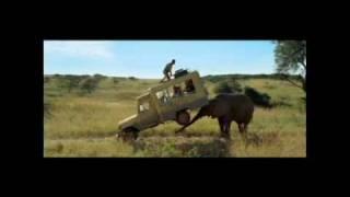 Safari: La bande annonce du nouveau film de Kad Merad et Olivier Baroux