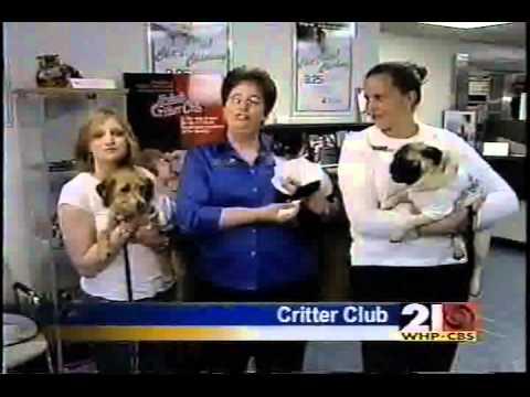 Belco Critter Club Account