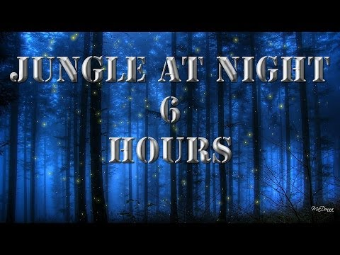 Relaxing Nature Sounds 2 - Jungle At Night | 6 Hours
