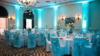 Baby blue Wedding Decoration Ideas