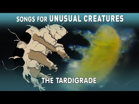 Hunting For Tardigrades!  | Unusual Creatures | PBS Digital Studios