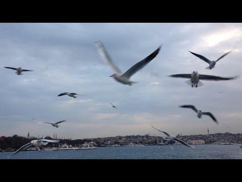 POV E004 - POV Tour of Istanbul Seabus Ferry across Bosphorus Strait from Europe to Asia