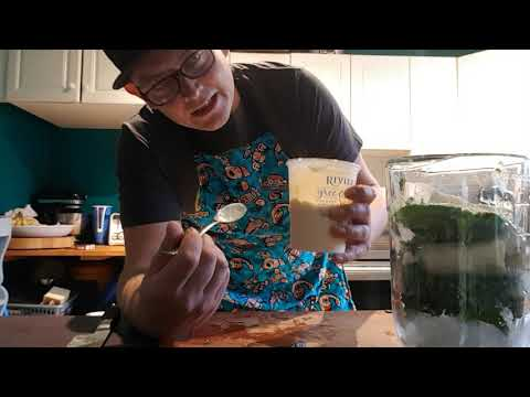 Assignment Super Foods -Super Smoothie with all the goodness