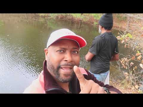 CREEK FISHING (COUNTRY STYLE) Catch And Cook