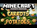 How To Get Carrots & Potatoes In Minecraft Pocket Edition - Minecraft PE Tutorial