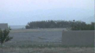 A-10 gun run in Afghanistan [targets moving into tree line]