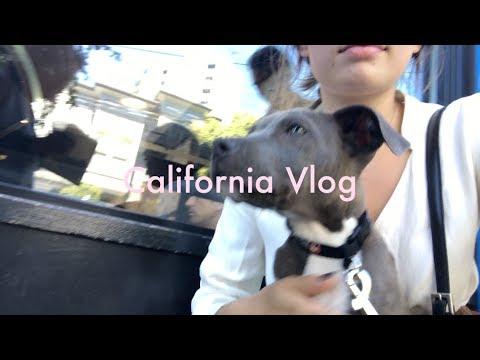 California Vlog