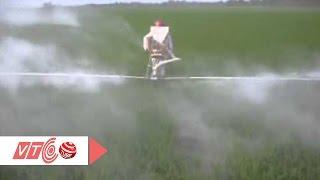 Máy phun vôi sáng chế của kỹ sư nông dân | VTC