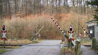 Spoorwegovergang Scherfede (D) // Railroad crossing // Bahnübergang