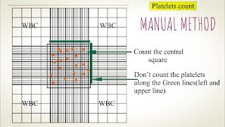 Platelet count Manual method. An easy way to understand in Hindi and Urdu.