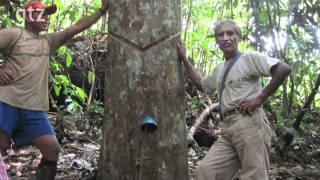 Biodiversidad y Cambio Climatico en la Reserva Comunal El Sira