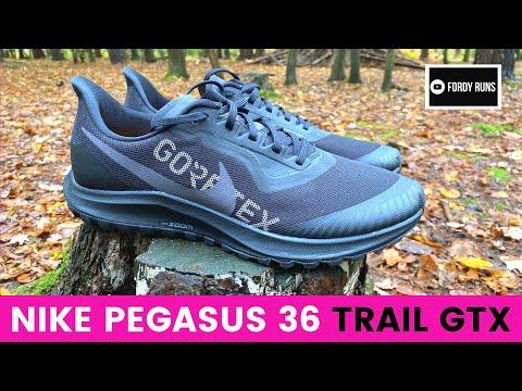 nike-pegasus-36-trail-gtx
