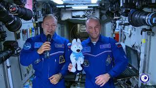 U-Лайка отправилась в космос