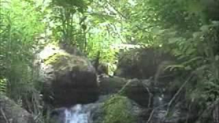 4- Surah An-Nisa'- Sa'ad Al-Gamidi Musshaf