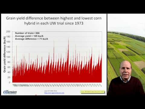 Corn: Survive and Thrive on Low Price Projections