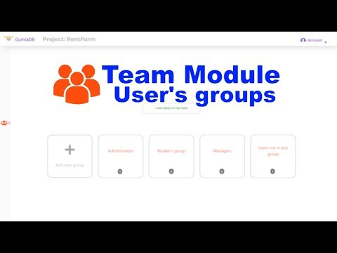 Team module. Access rights and roles in QuintaDB service