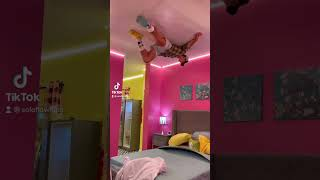 Stuck to the ceiling?! *Insane* #shorts