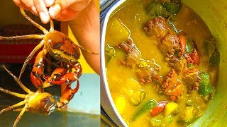 Indian crab hatavaji curry recipe(cut and cook)|Kekda hatavaji recipe (in hindi)