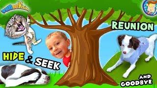 Dog with a VLOG #2! Rose Reunites / Meeting a Cat / Hide & Seek & Saying Goodbye (FUNnel Vision)