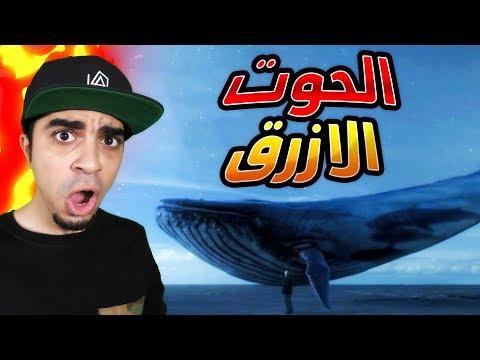 """اخطر لعبة في العالم """" الحوت الازرق """" Feed and Grow Fish !!  😱🔥"""