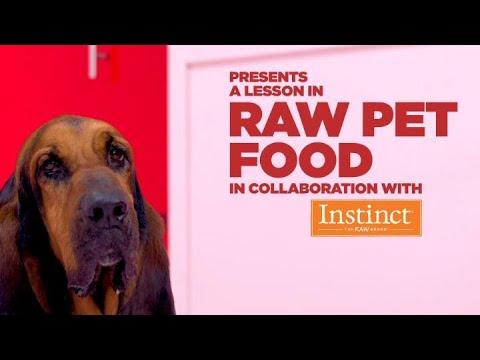 A Lesson In Raw Pet Food | Petco & Instinct