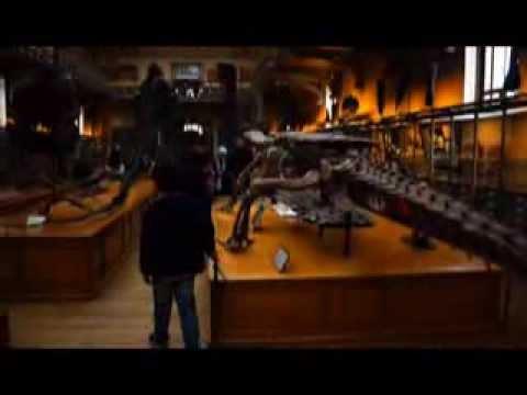 2014 Museum d'Histoire Naturelle
