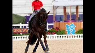 Helen Langhanenberg, Dressage training of the young horse