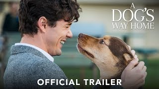 A Dog's Way Home | International Trailer | Coming Soon