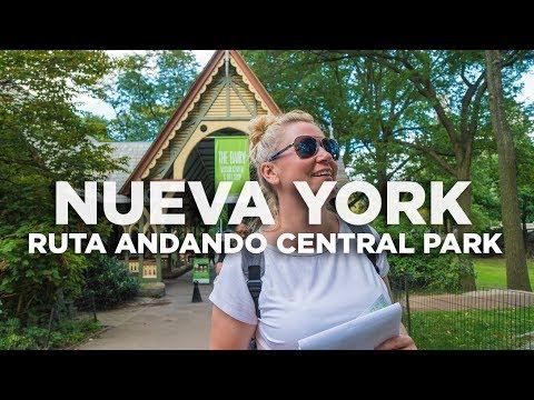 Ruta andando por Central Park. Nueva York Molaviajar