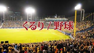 くるり - 野球|Lyric Video
